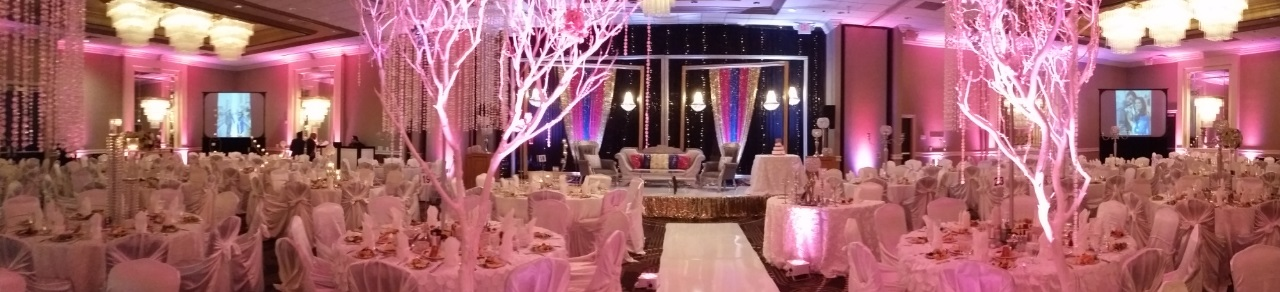 Houston Weddings, Weddings in Houston, Big Screen Rear Projection for Houston Audio Visual, Houston A/V, Up-Lighting, Houston Indian Wedding