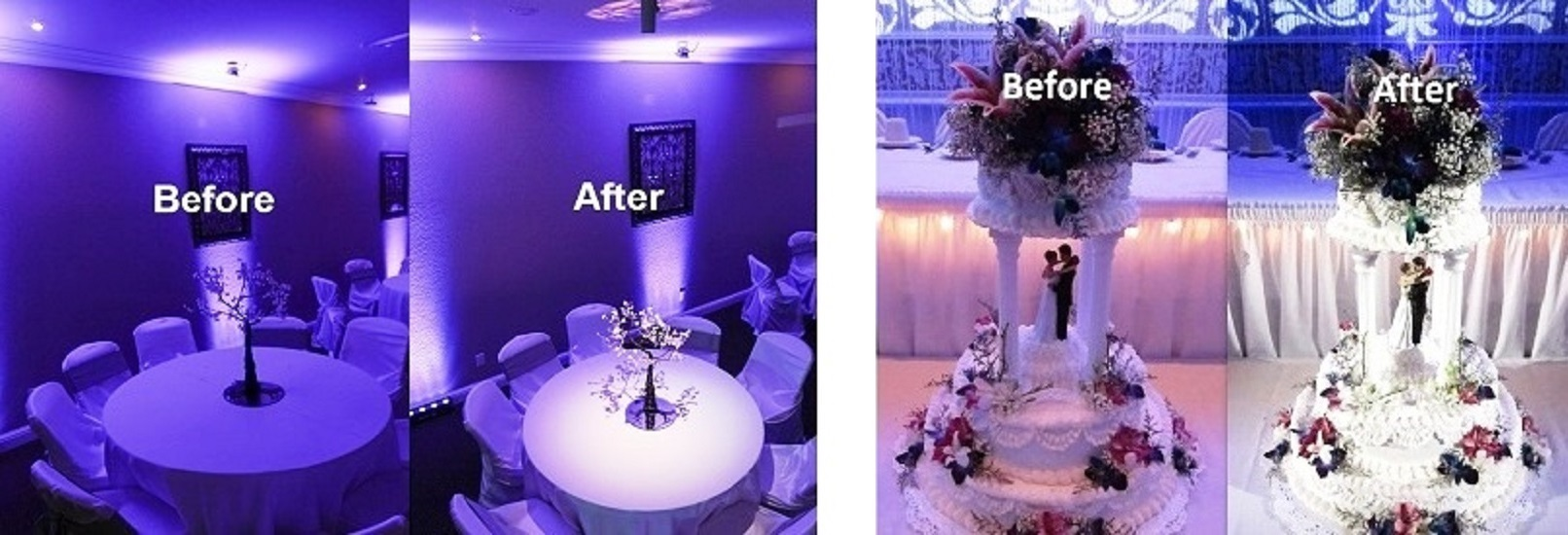 Pin Lights, Cake Lighting, Table Lighting at a Houston Wedding or event